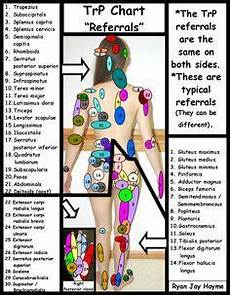 Referred Back Chart Trigger Point Referral Chart A Trigger Point Is A