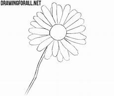 Drawings Of A Flower How To Draw A Flower Easy Drawingforall Net