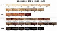 Loreal Hair Color Color Chart Amazon Com L Oreal Paris Excellence Cr 232 Me With Pro