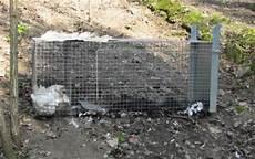 inserzioni la gabbia oggiono la polizia provinciale sequestra una gabbia usata