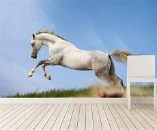 Horses Sofa 3d Image by Photo 3d Wallpaper The Running Wallpaper For Walls