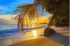 Malvorlagen Meer Und Strand Warstein Fotos Strand Meer Natur Palmen 2048x1365