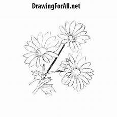 Drawings Of A Flower How To Draw Flowers Drawingforall Net