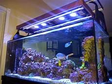 Aquarium Canopy Lights My Diy Hood For T5 Amp Radion Led Lighting Marine Depot Blog