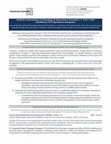 Cio Sample Resume Chief Information Officer Resume Example Cio Resume Sample