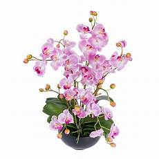 Light Pink Phalaenopsis Orchid Light Pink Phalaenopsis Artificial Orchid With Buds In