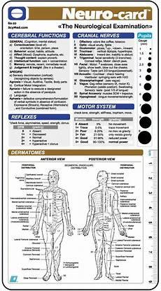 Neurological Exam Pin Em Coisas Para Usar
