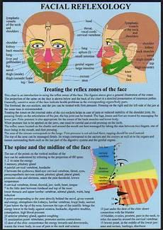 Face Reflexology Chart Facial Reflexology A4 Chart Acumedic Shop