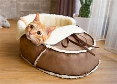 30 coolest cat beds for your feline friend awesome stuff 365