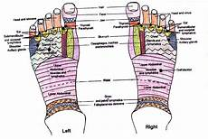 Spinal Pressure Points Chart Foot Reflexology Points Reflexology Foot Map