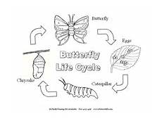 free butterfly coloring pages from www thebutterflysite