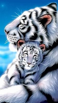 black and white tiger iphone wallpaper 35 best gif tigers images on
