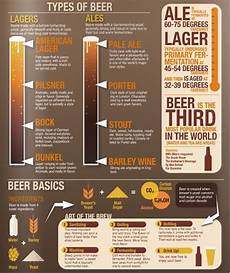 Craft Style Chart Types Of Home Brewing Infographic
