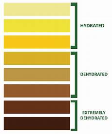 Dehydration Chart Drug Free Sport Perspectives Hydration 411
