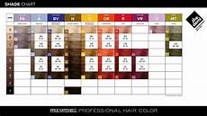 Paul Mitchell Inkworks Color Chart The Demi From Paul Mitchell 174