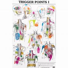 Travell Trigger Point Chart Trigger Point Charts I And Ii Trigl Trigger Points