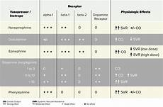 Vasopressor Chart Vasopressors Amp Inotropes The Medications