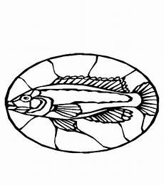 Malvorlagen Fische Quest Fische 00265 Gratis Malvorlage In Fische Tiere Ausmalen