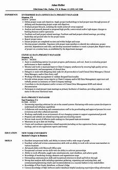 Database Management Resume Data Project Manager Resume Samples Velvet Jobs