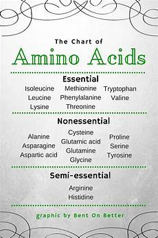Amino Acid Benefits Chart Why You Should Eat More Protein Bent On Better