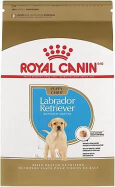 Labrador Puppy Food Chart India Royal Canin Labrador Retriever Puppy Dry Dog Food 30 Lb