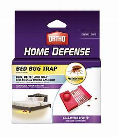 raid bed bug detector trap 8 ct health