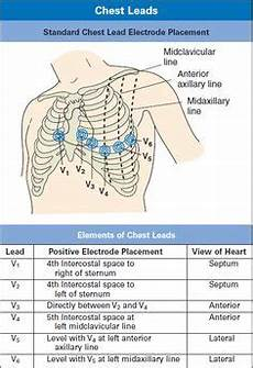Ecg Placement Chart Normal Vital Signs Chart For All Ages Google Search