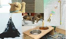 5 purrfect diy projects for cat diy thought