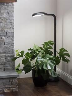 Plant Light Floor Lamp Floor Plant Lamp Full Specrum Cfl Grow Light Free Shipping