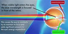 How Light Enters The Eye Online Eyeglasses With Customer Service Center In