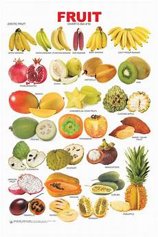 Vegetable Picture Chart Picture Dictionary Charts And Fruit On Pinterest