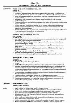 Asst Manager Resume Asset Protection Manager Resume Samples Velvet Jobs