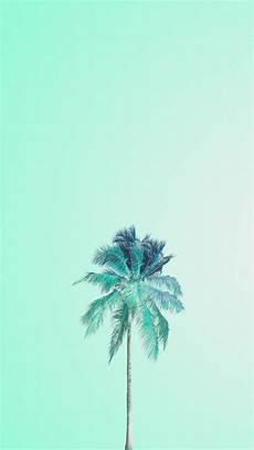 Iphone Wallpaper Cool Tree by Mojito Palm Minimalist Wallpapers Mint Wallpaper