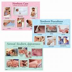Newborn Chart Development Educational Newborn Charts Set Of 3 Childbirth Graphics