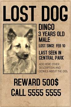 Lost Dog Poster Maker Copy Of Lost Dog Lot Pet Old Style Poster Template