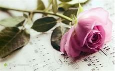 Flower Wallpaper Song by 粉玫瑰乐谱背景素材 素材公社 Tooopen