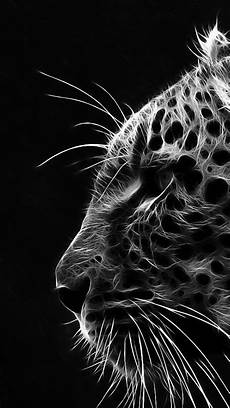 Black And White Photography Iphone Wallpaper by Iphone Hd Black White Hd Wallpapers