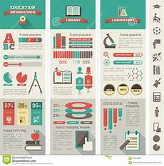 education infographics stock vector illustration of