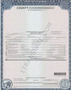 Sample Birth Certificate Pdf Ukrainian Russian Us Birth Certificate Translation