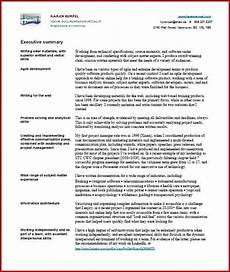 Resume Technical Summary Resume Examples In India 400 Resume Format Samples