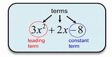 Terms In Algebra Polynomials Mathbitsnotebook A1 Ccss Math