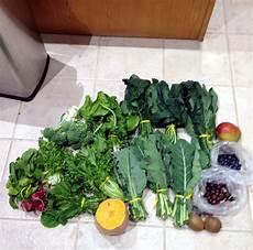 Iguana Food Chart How To Make Iguana Salad For Juveniles Reptile Function