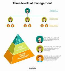 Levels Of Organization 3 Management Levels In Organizational Hierarchy