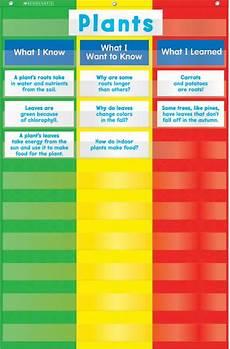 Small Pocket Charts For Teachers 3 Column Chart Pocket Chart By Teachers Friend Pocket