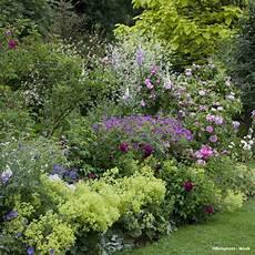 wenke pot idees collection de v 233 g 233 taux pour un jardin romantique en 2020