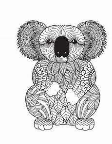 amazing animals for adults who color live your in