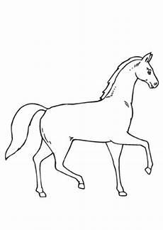 ausmalbilder pferd im trab pferde malvorlagen