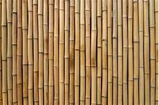 Bamboo Texture Bamboo Background Vectors Photos And Psd Files Free
