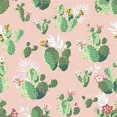cactus iphone wallpaper cactus pattern wallpaper