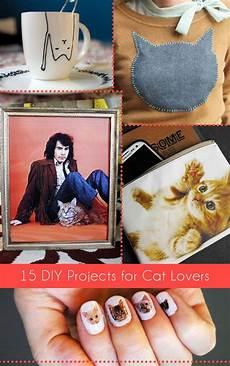 15 diy projects for cat a bigger
